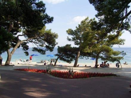 Strand in Brela - Strand Punta Rata