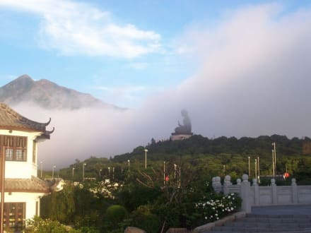 Tempel/Kirche/Grabmal - Tian Tan Buddha -  Größter sitzender Buddha
