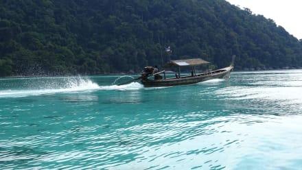 Andaman Snorkel Discovery - Andaman Snorkel Discovery