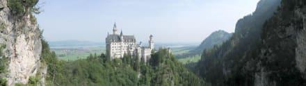 Neuschwanstein - Schloss Neuschwanstein