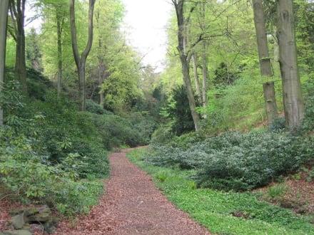 Waldweg - Villa Hügel