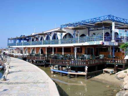 Hafen-Umgebung - Restaurant Harbour Pub