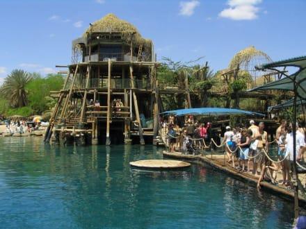 Amusement Park - Dolphin Reef Eilat