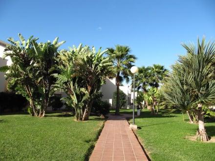 Weg hotel nebenhaus bild hotel riu oliva beach village for Riu oliva beach village