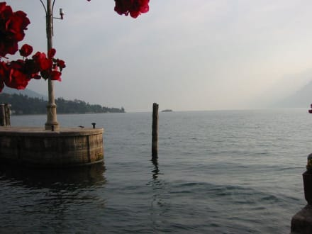 Malcesine Blick auf den Lago - Hafen Malcesine