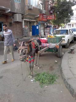 In den Straßen zum Basar - Bazar von Assuan