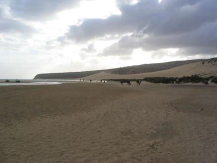 Playa Sotavento - Playa de Sotavento