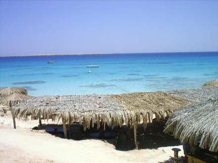 Mahmay Insel - Giftun / Mahmya Inseln
