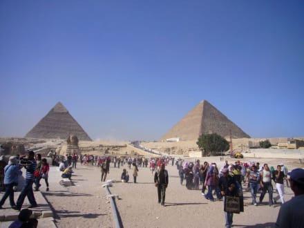 Massentourismus - Sphinx von Gizeh