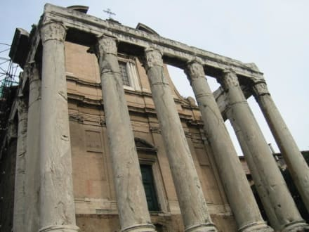 Forum Romanun - Forum Romanum