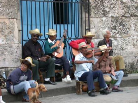 Musiker in Havanna - Altstadt Havanna