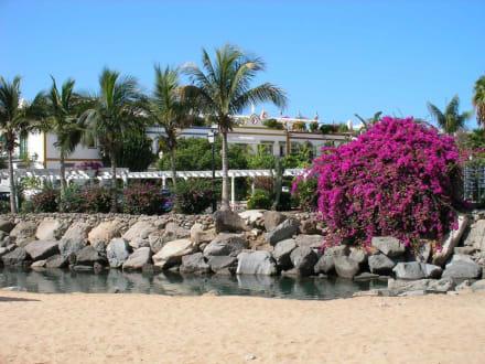 Strand in Richtung Hafen - Strand Puerto de Mogán