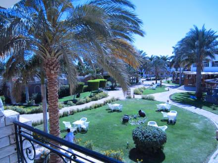Gartenanlage - Aladdin Beach Resort