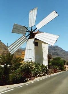 Windmühle - Touren & Ausflüge