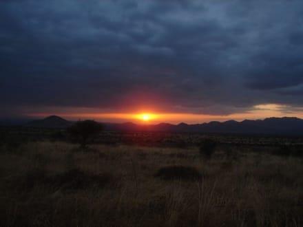 Sonnenuntergang - Tsavo West Nationalpark