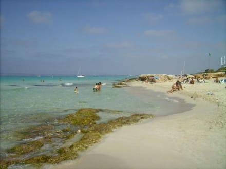 Strand - Strand Playa Migjorn