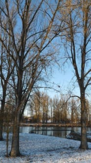 Winter an der Isar - Plattling