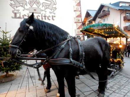 Unser Pferdegespann - Adventmarkt Wolfgangsee