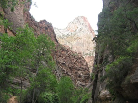 Zion National Park - Zion Nationalpark