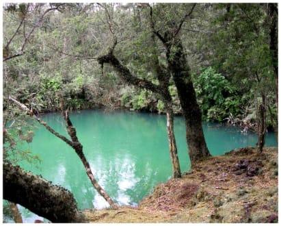 Laguna Verde am Lago Llanquihue - Umgebung Puerto Varas