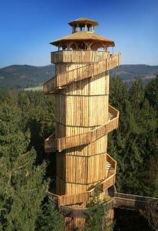 Ausflugsziel Baumkronenweg Kopfing Aussichtsturm - Baumkronenweg