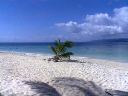 Cayo Levantado - Bacardi Insel - Isla Cayo Levantado