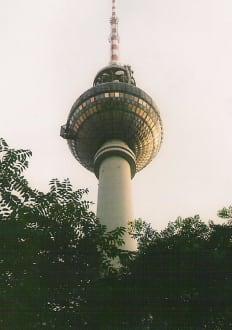 Tele-Spargel - Berliner Fernsehturm