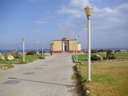 Das Aquarium - Meerwasseraquarium