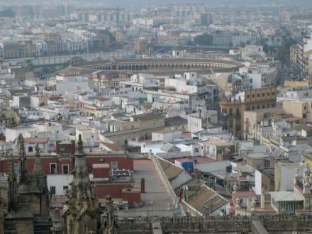 Blick von der Galerie der Giraldar ... - Kathedrale von Sevilla