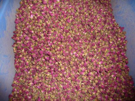 Flowertea - Fangcun Tea Market