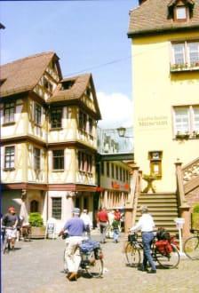 Grafschaftsmuseum - Grafschafts-Museum