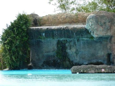 pool mit wasserfall bild hotel intercontinental resort tahiti in papeete tahiti. Black Bedroom Furniture Sets. Home Design Ideas