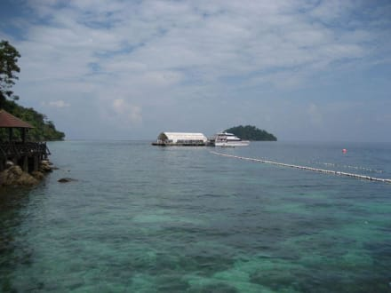 """Die schwimmende Plattform von """"Langkawi Coral"""" - Pulau Payar Marine Park"""