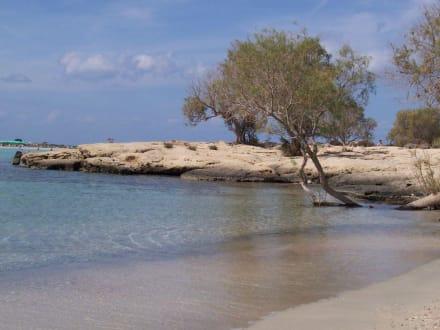 Sonne Sand und mehr Meer - Strand Elafonisi/Elafonissi