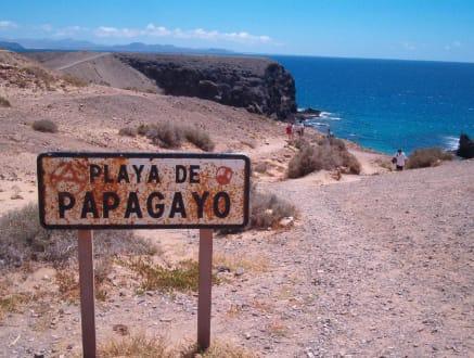 Hier geht es zum Playa de Papagayo - Playa de Papagayo