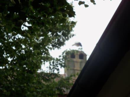 Auf dem Dach - Hotel Gasthof Der Krug