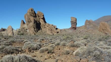 Reserva natural/zoo - Parque Nacional del Teide