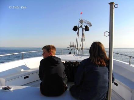 Logenplatz - Ausflug mit der Rossana auf die Adria