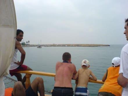 Auf der Suche nach den Wasserschildkröten... - Bootstour Calypso Colakli