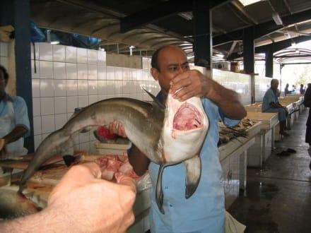 Fischmarkt - Fischmarkt