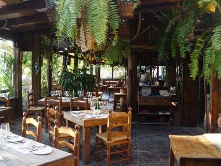 Wintergarten im Restaurant El Molino Blanco - El Molino Blanco