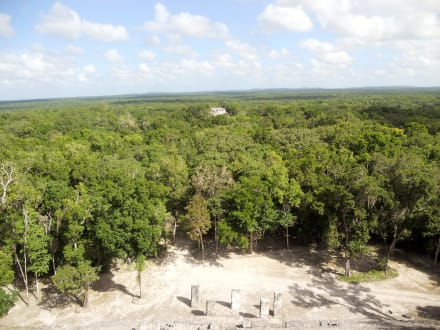 Sonstiges Landschaftmotiv - Calakmul