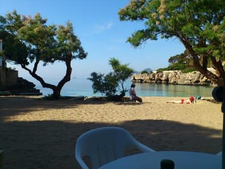 Beach/Coast/Harbor - Cala Gat Bay