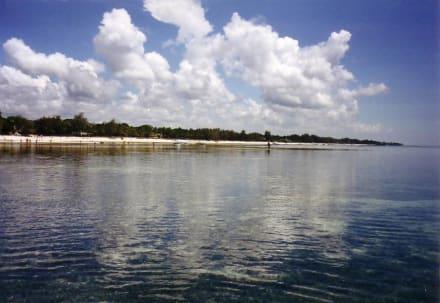 Diani Beach - Tauchen & Schnorcheln Diani Beach