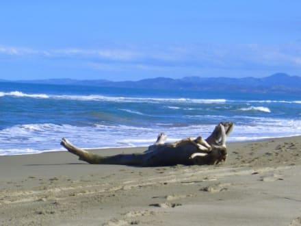 Ruhe am Strand - Playa Camino