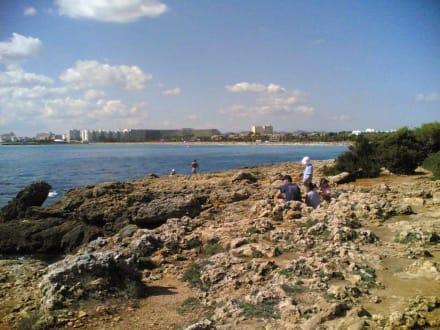 Punta de n'Amer - Naturschutzgebiet Punta de n'Amer