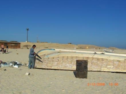 Es wird auch gearbeitet - Giftun / Mahmya Inseln