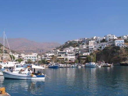 Am Hafen - Hafen Agios Nikolaos