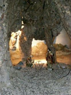 Gebetsgrotte - La Granja