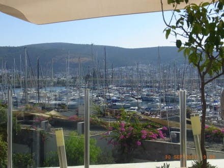 Frühstücksterrasse - Hotel Marina Vista